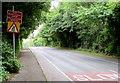 ST2992 : Warning sign - road narrows, Pentre Lane, Cwmbran by Jaggery