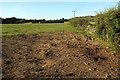 SE2948 : Field near Dunkeswick Lodge by Derek Harper