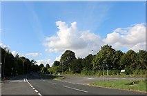 SU4632 : Andover Road North, Harestock by David Howard