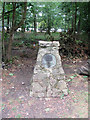 """SP8809 : """"Countryside Award 1970"""" plaque in Wendover Woods by Chris Reynolds"""