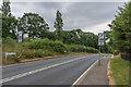 TQ1861 : Rushett Lane by Ian Capper