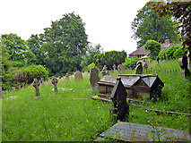 SU9948 : In The Mount cemetery, Guildford by Robin Webster