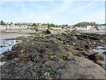 NO4102 : Lundie Rocks at low tide by Richard Law