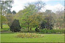 SW8032 : Kimberley Park by N Chadwick