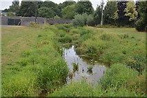 S2034 : Clashawley River by N Chadwick