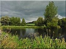 SY2793 : Lake at Musbury by Roger Cornfoot