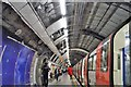 TQ3280 : Northern Line, Bank Underground Station by N Chadwick
