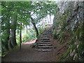 NY3817 : Ullswater Way footpath near Stybarrow Crag by E Gammie