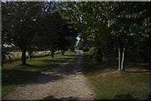 TF2056 : Private drive by Bob Harvey