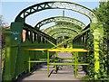 SJ8299 : The Adelphi Bridge : Week 35