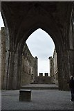 S0740 : The Cathedral, The Rock of Cashel by N Chadwick