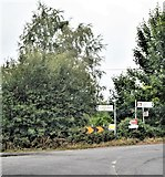 S1638 : Junction on bend, R692 by N Chadwick