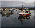 NT2577 : Newhaven Harbour : Week 36