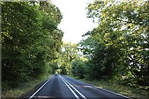 SU4436 : The A272 by Crawley Down by David Howard
