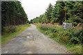 SO2188 : Entering Kerry Forest by Bill Boaden