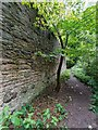 NH6568 : Path around Teaninich Walled Garden by valenta