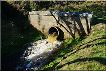 SE0511 : Culvert at Round Hill by Ian S