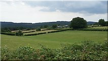 ST4397 : Across the fields to Springfield Farm by Jonathan Billinger
