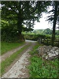 SX7087 : Track between Chagford and Yellam by David Smith