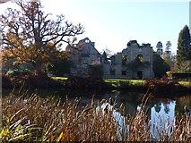 TQ6935 : Scotney Castle by Chris Gunns