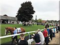 SK6101 : Leicester Racecourse - The parade ring by Richard Humphrey