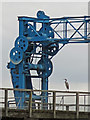 NZ2362 : Heron by a coal chute at Dunston Staiths by Mike Quinn