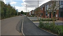 SK5802 : New housing at St Mary's Park by Mat Fascione