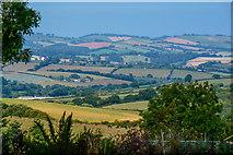 SX7796 : Mid Devon : Countryside Scenery by Lewis Clarke