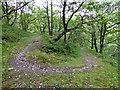 SH7710 : Dog-leg on the path leading from Cwm Dulas towards Esgair-neiriau by John Lucas