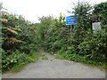 SX5279 : Road to Horndon Bridge by Vieve Forward