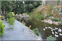 S0524 : River Suir by N Chadwick