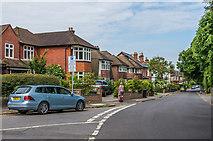 TQ2160 : College Road by Ian Capper