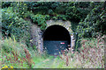 NZ8514 : South Portal of Sandsend Tunnel by Chris Heaton