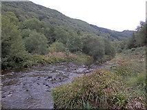 SN7278 : The Afon Rheidol as it emerges from the gorge by Rudi Winter