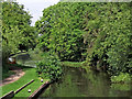 SP5699 : Grand Union Canal north of Whetstone in Leicestershire by Roger  Kidd