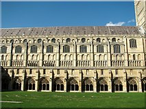 TG2308 : Norwich cathedral nave as seen from the cloisters by Evelyn Simak
