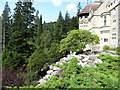 NU0702 : Cragside and its rockery garden by Gordon Hatton