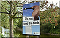 "J3675 : ""Do not feed the birds"" sign, Victoria Park, Belfast (September 2018) by Albert Bridge"
