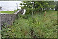 N5368 : River Deel enters Lough Lene by N Chadwick