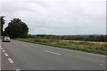 SU8721 : Petersfield Road, Midhurst by David Howard