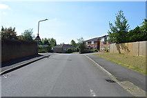 TQ5942 : Hornbeam Avenue by N Chadwick