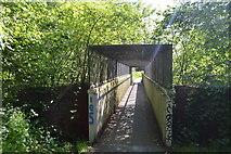 TQ5942 : Nell's Bridge by N Chadwick