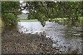 NT2838 : River Tweed at Kailzie by Jim Barton