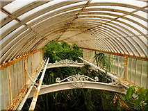 TQ1876 : South wing of the Palm House by Jonathan Billinger