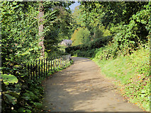 SJ8382 : Footpath to Quarry Bank MIll by David Dixon