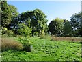 SP8901 : Boug's Meadow in great Missenden by Steve Daniels
