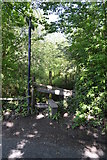 TQ5942 : Footpath off Powdermill Lane by N Chadwick