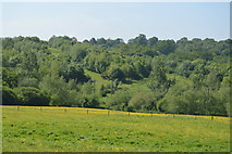 TQ5942 : High Weald scenery by N Chadwick