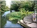 TG2209 : Spiraling steps leading to the River Wensum by Evelyn Simak