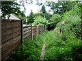 SD7917 : Public footpath behind a Ramsbottom Lane back garden by Christine Johnstone